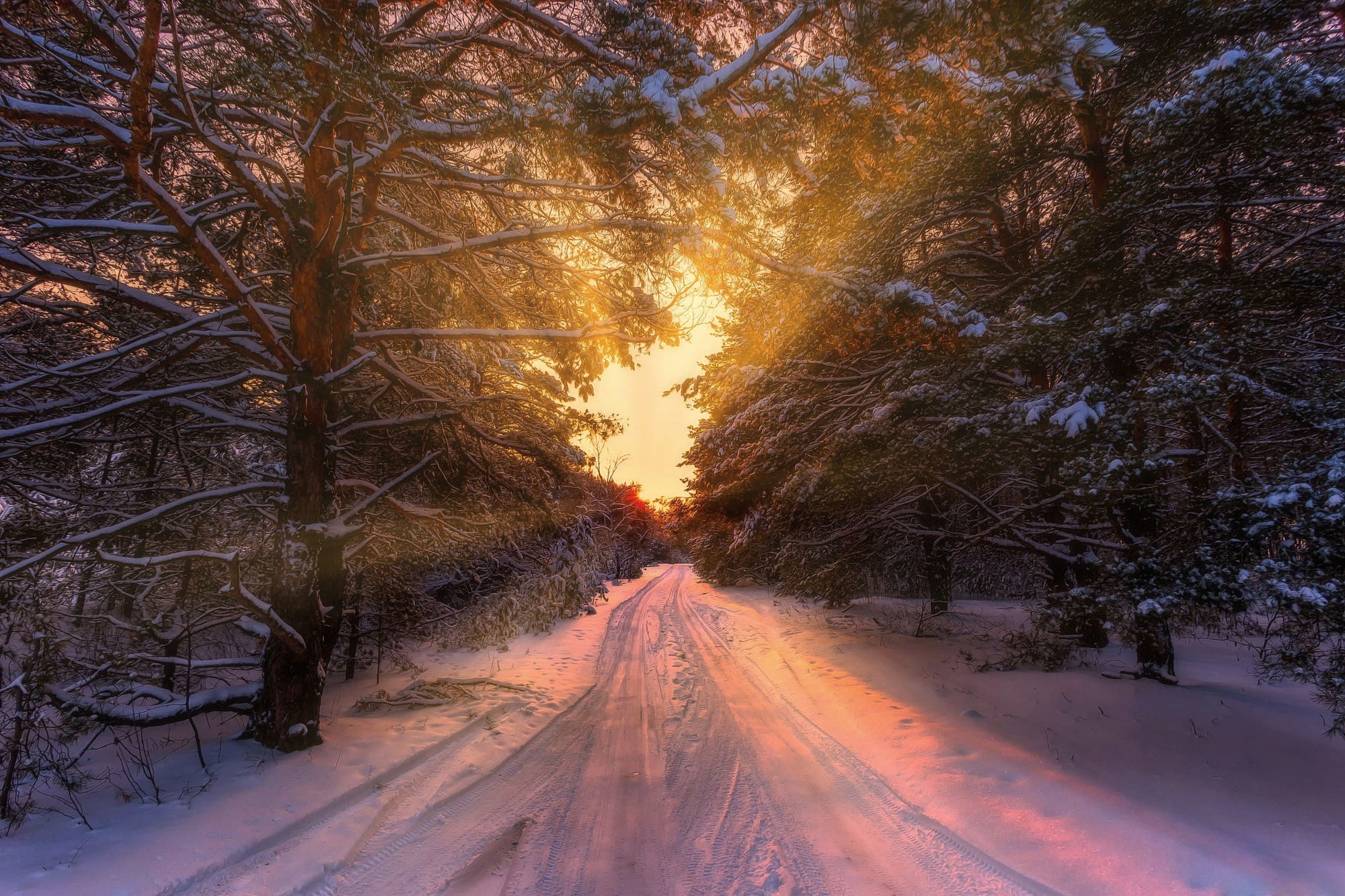 дорога зима вечер снег  № 3902584 бесплатно