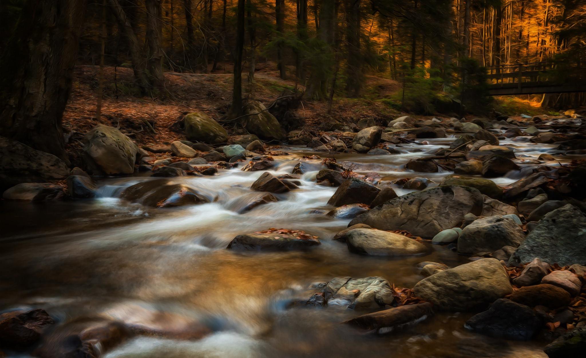 река лес  № 2789252 бесплатно