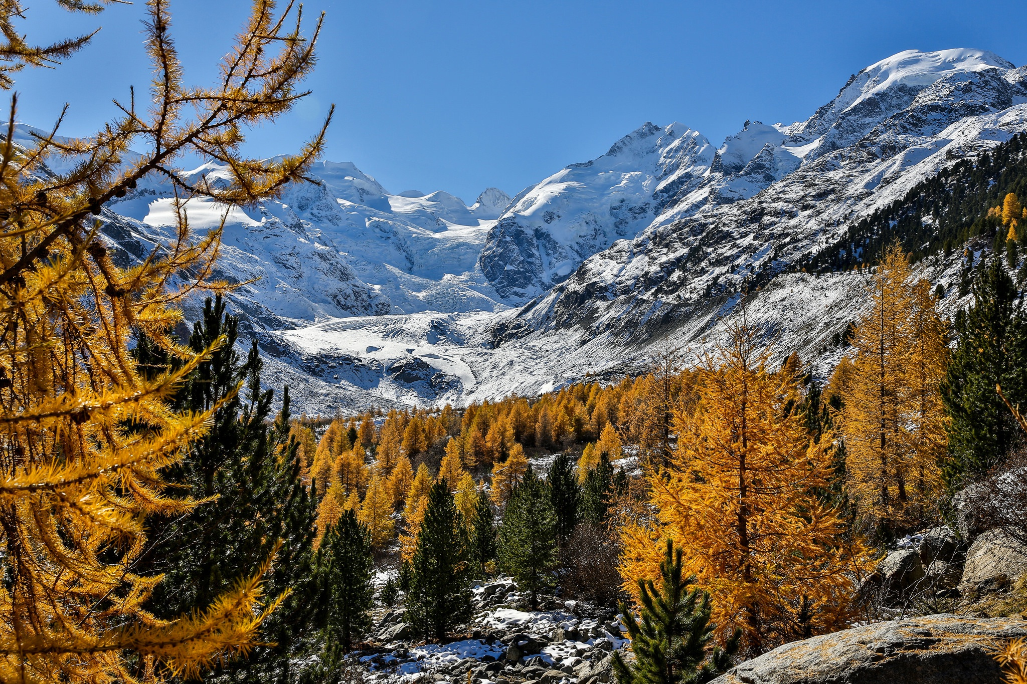 Piz Bernina, Moteratsch Glacier, Engadine, Switzerland  № 1473509 бесплатно