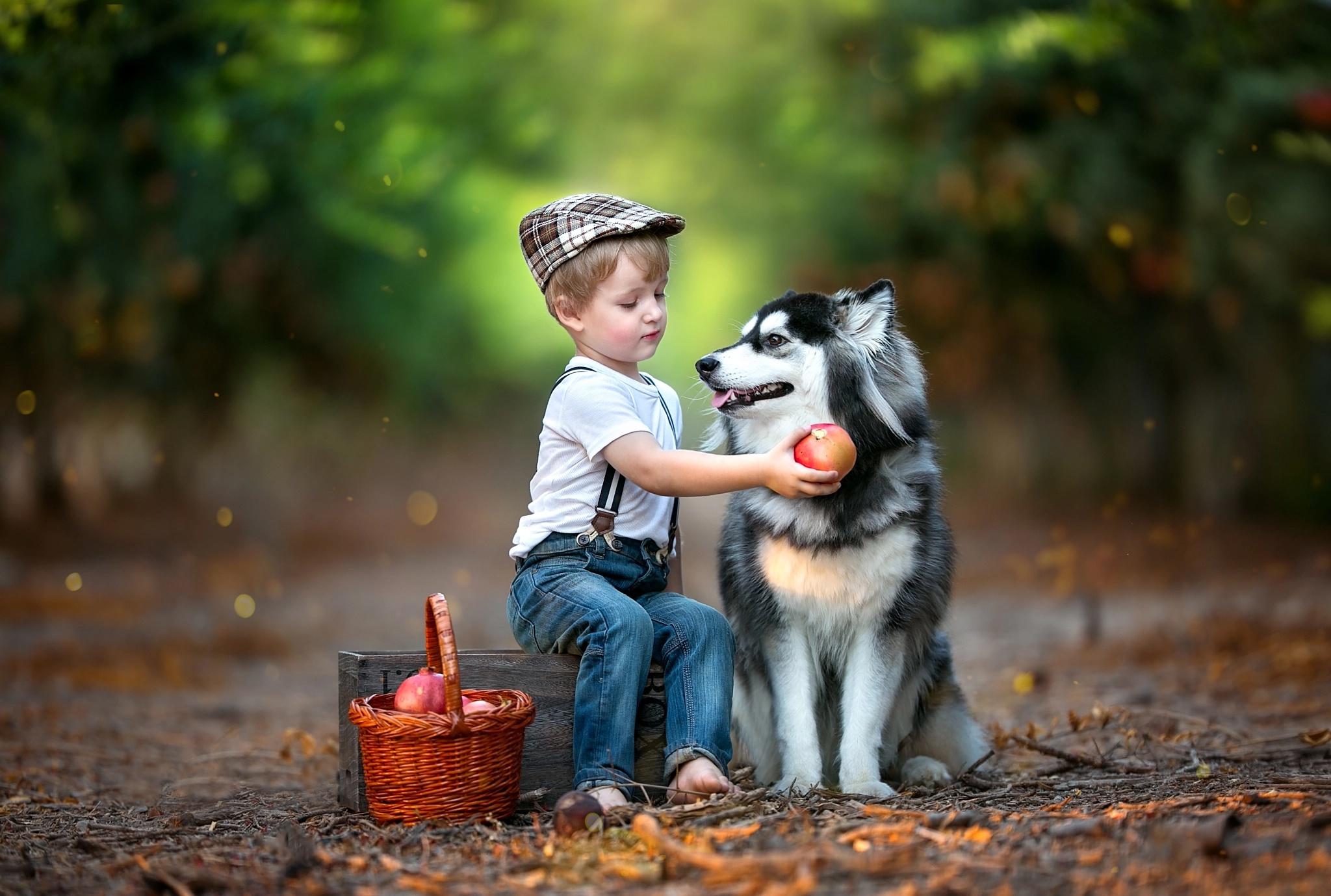Собака ребенок  № 2980107 бесплатно