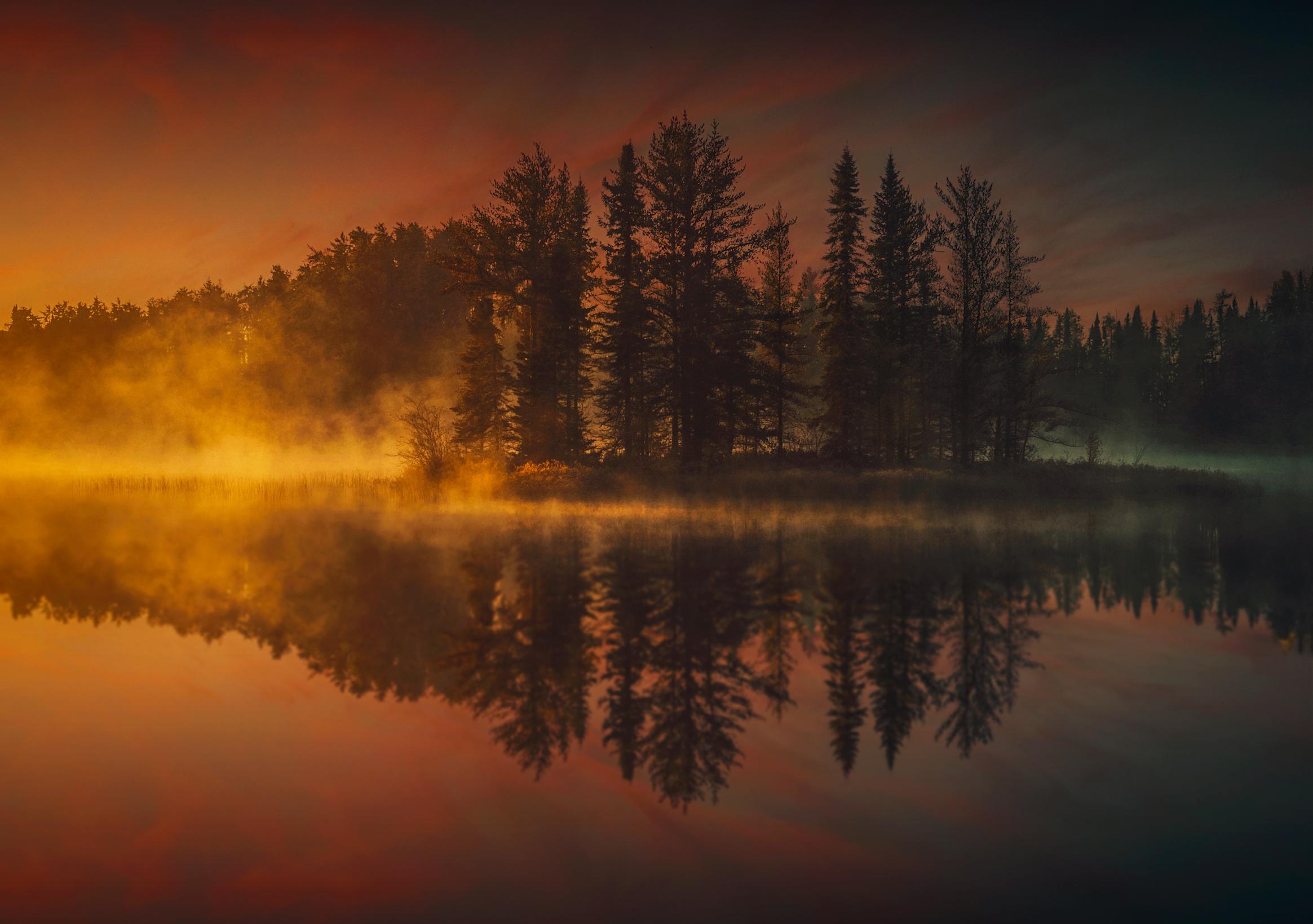 Закат в тумане в лесу  № 1140018 бесплатно