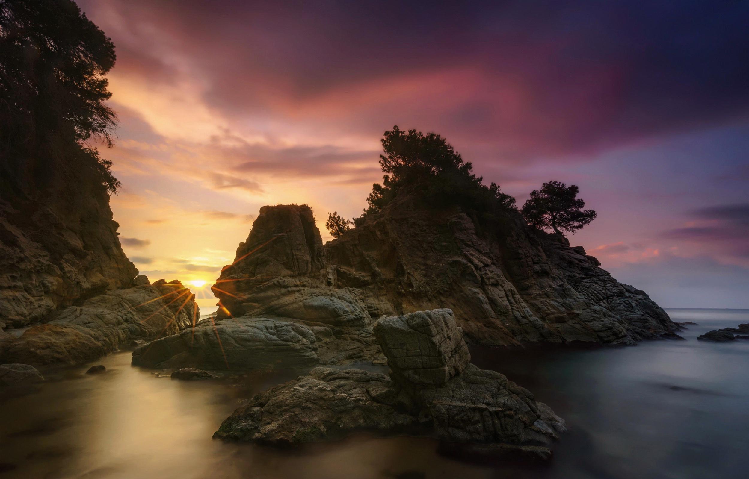 природа море деревья камни скалы  № 38466 без смс