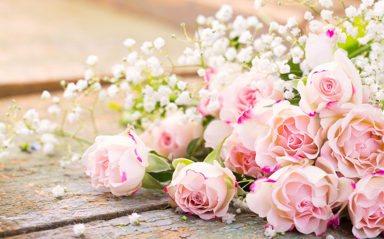 Красивые обои на рабочий стол букет роз