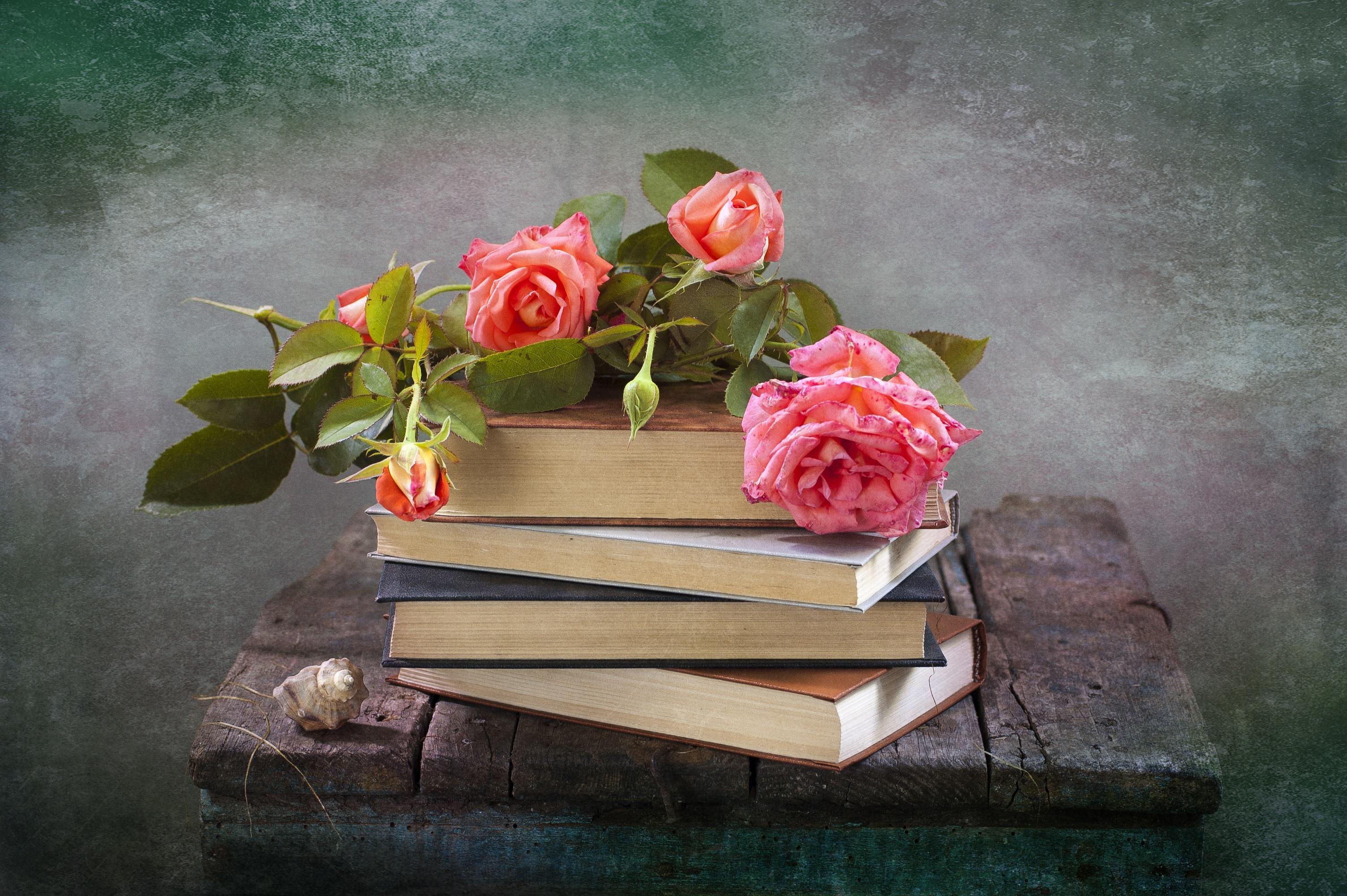 Цветок в книге  № 1489057 бесплатно