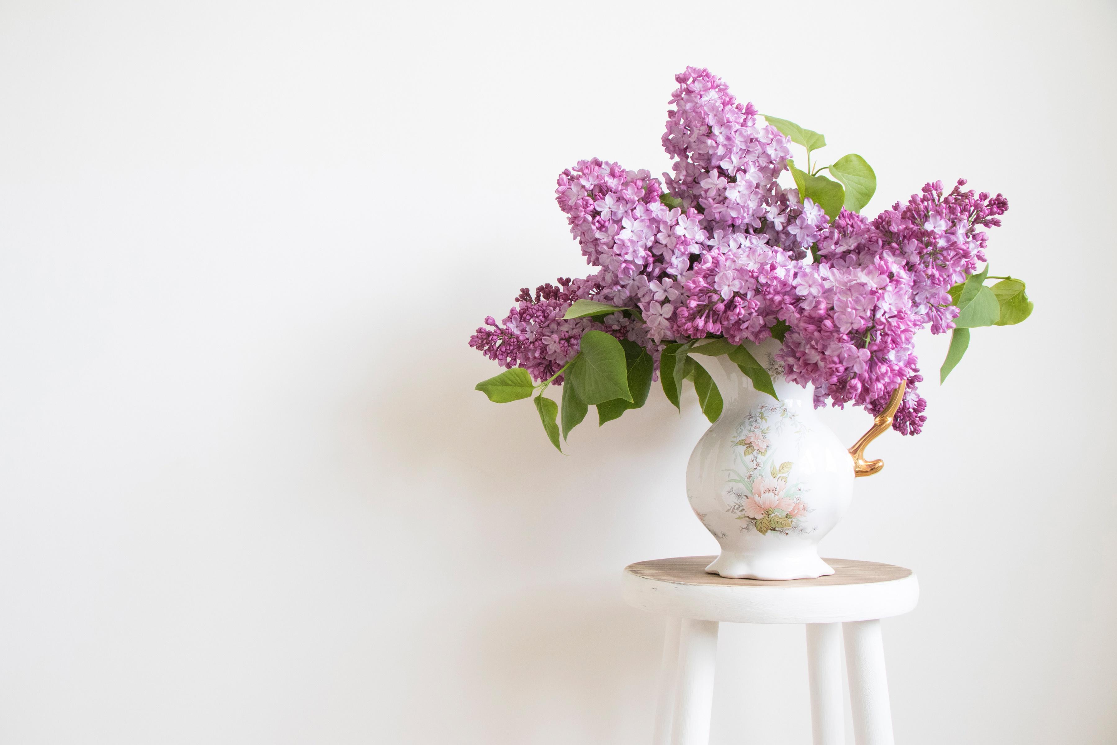 природа цветы ваза  № 1734221 загрузить