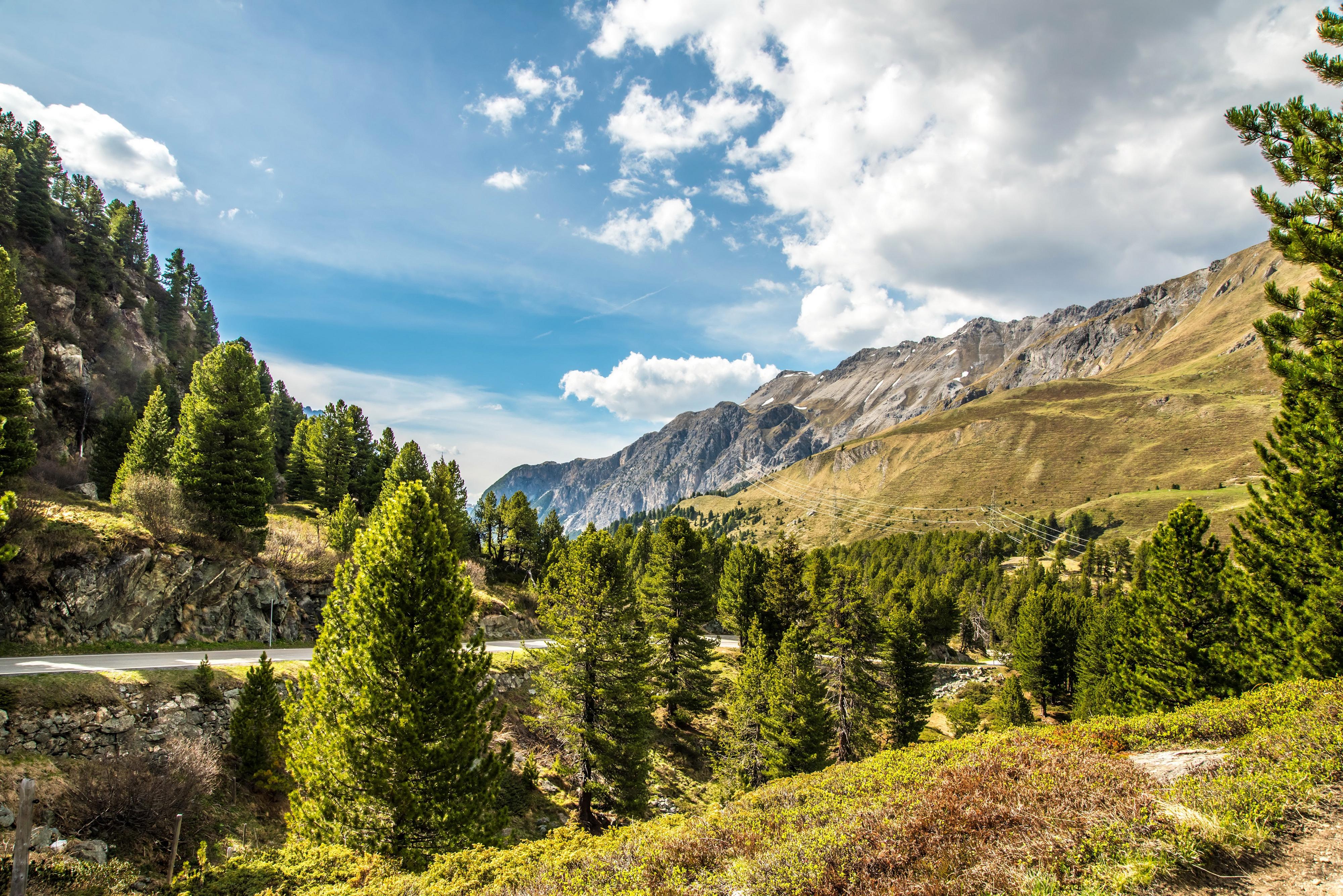 Швейцария Горы река деревья трава  № 184036  скачать