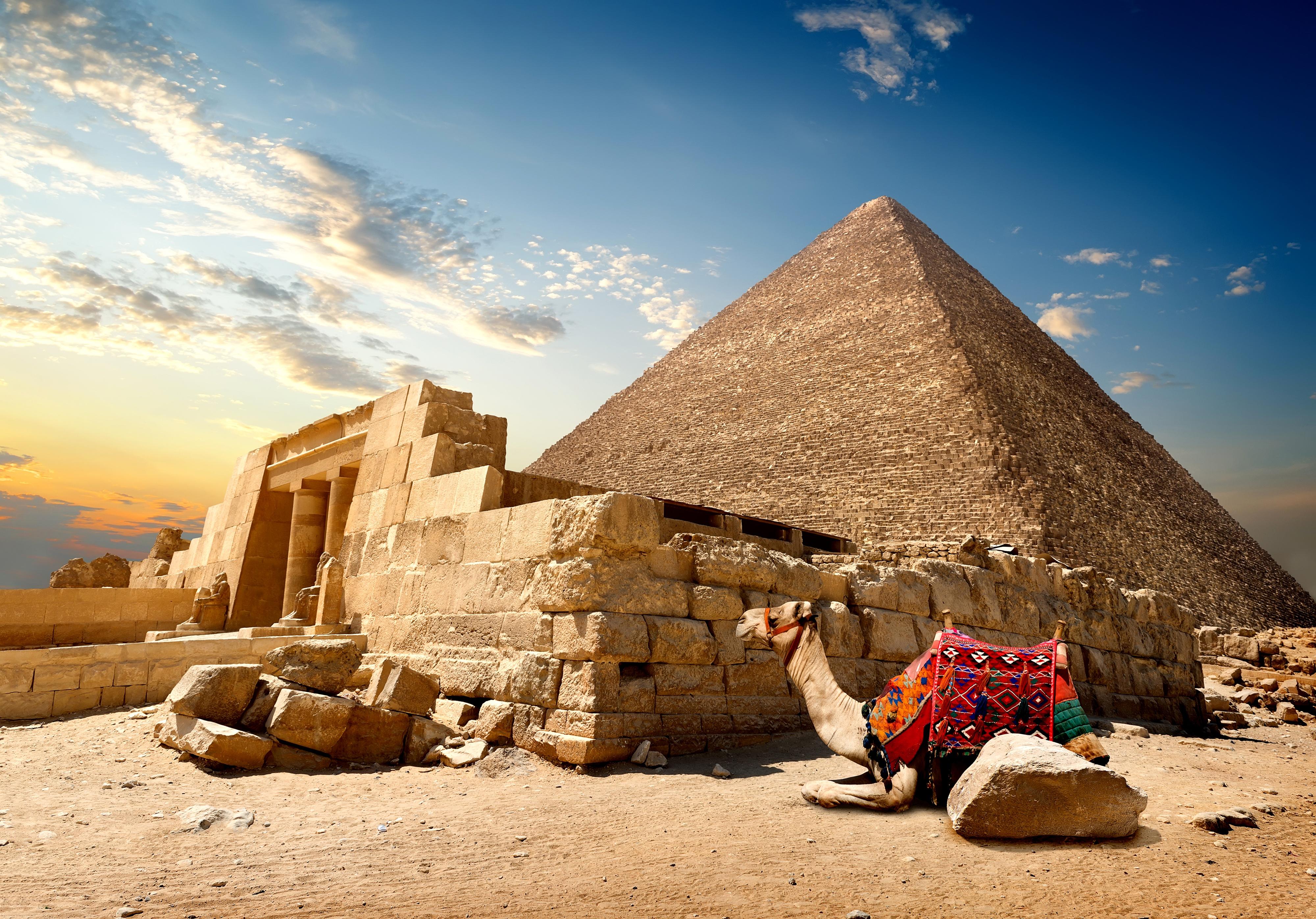 thai-egyptian-day-desi-pics-newsgroup