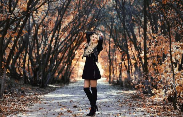 Picture autumn, girl, pose, Park, photo, hair, figure, dress, jacket, blonde, beautiful, Murat Kuzhakhmetov