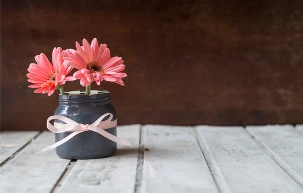 Picture tape, Bank, chrysanthemum, wood, pink, flowers, mug