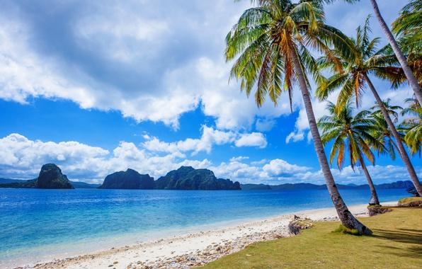 Picture sea, beach, clouds, tropics, palm trees, the ocean, rocks, coast, Philippines