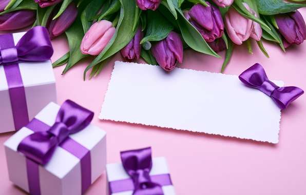 Picture bouquet, gifts, tulips, love, bow, fresh, flowers, romantic, tulips, gift, purple