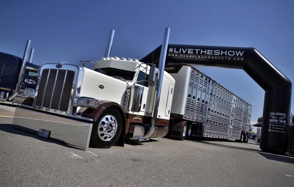 Picture truck, truck, Peterbilt 389, livetheshow