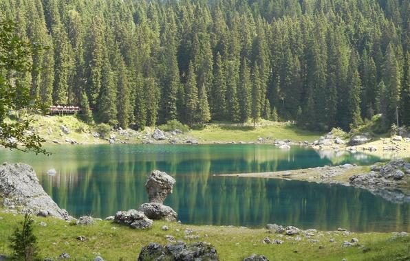 Wallpaper Nature, Lake, Forest, Stones, Spruce, Italy, Lake Carezza