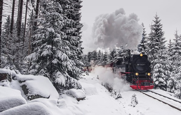 Photo wallpaper winter, forest, train