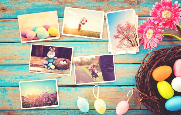 Picture flowers, photo, eggs, spring, camera, colorful, Easter, gerbera, wood, pink, flowers, camera, spring, Easter, eggs, …