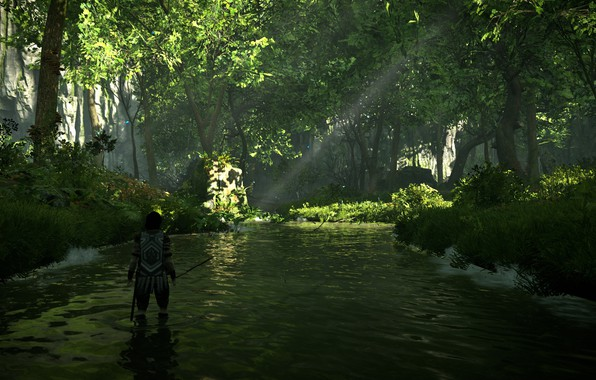 Picture forest, trees, river, Shadow of the Colossus, In the shadow of the colossus