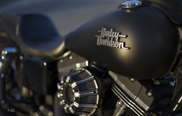 Picture background, motorcycle, Harley Davidson