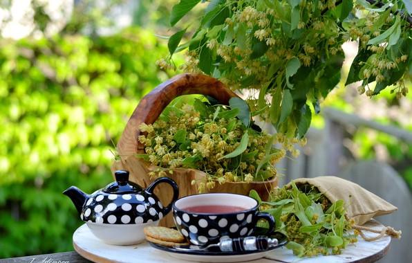 Picture tea, basket, Linden