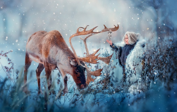 Picture winter, snow, joy, nature, animal, boy, deer, bells, child