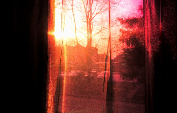 Picture the sky, the sun, trees, happiness, sunset, mood, pink, spring