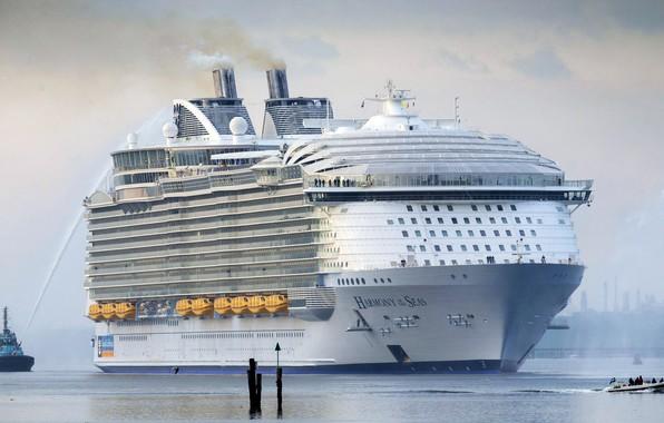 Picture Liner, Board, Boat, The ship, Passenger, Meeting, Huge, Tank, Passenger liner, Tug, Body, Harmony of …