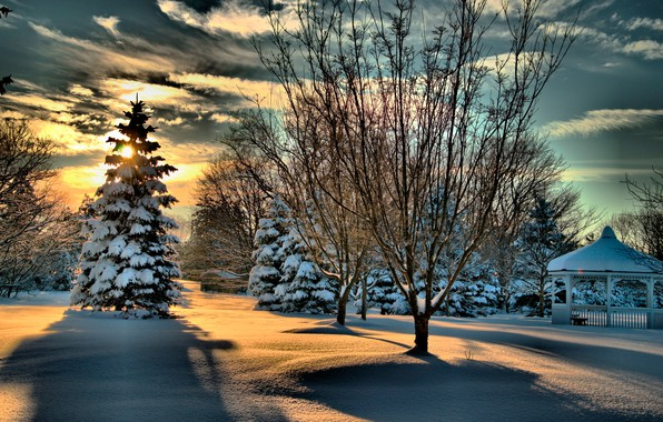 Picture winter, forest, the sky, the sun, clouds, snow, trees, Park, gazebo