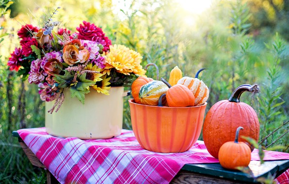 Picture flowers, bouquet, pumpkin, the gifts of autumn
