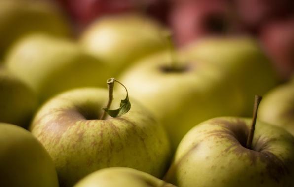 Picture macro, apples, fruit
