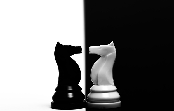Picture horse, chess, figure, contrast
