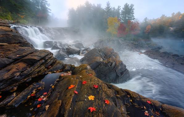 Picture autumn, nature, river, rocks, paint, foliage, stream