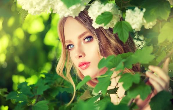Picture summer, look, girl, Bush, makeup, Girl, flowers, make up