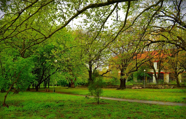 Picture Grass, Spring, House, Park, Nature, Grass, Park, Spring