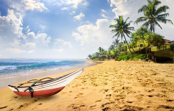 Picture sand, sea, beach, the sky, the sun, clouds, tropics, palm trees, coast, boat, horizon, houses