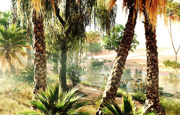 Picture nature, Ubisoft, Assassin's Creed
