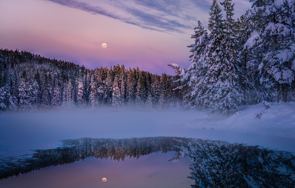 Photo wallpaper forest, haze, lake, the evening, the moon, nature, winter, snow
