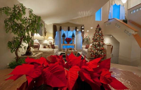 Picture flowers, table, room, sofa, holiday, tree, New Year, Christmas, vase, tree