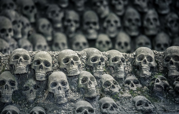 Picture background, the darkness, skull