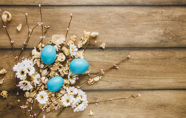 Picture flowers, chamomile, spring, Easter, wood, flowers, spring, Easter, eggs, decoration, Happy, tender, the painted eggs