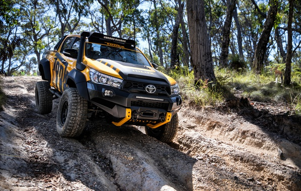 Picture Concept, Tuning, Toyota, Car, Hilux, 2017, Tonka, 2017 Toyota Hilux Tonka Concept