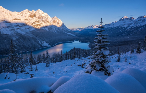 Picture winter, snow, mountains, lake, ate, Canada, the snow, Albert, Banff National Park, Alberta, Canada, Rocky …