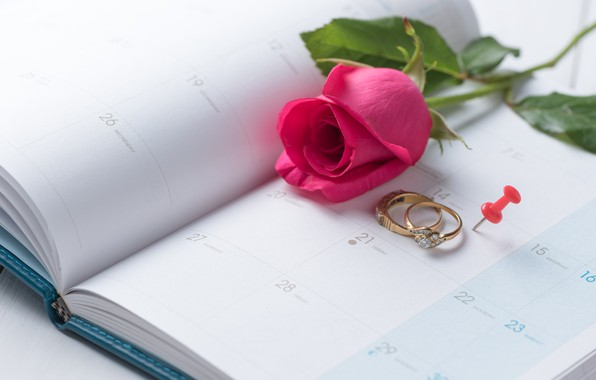 Picture holiday, rose, ring, Valentine's day, the indicators