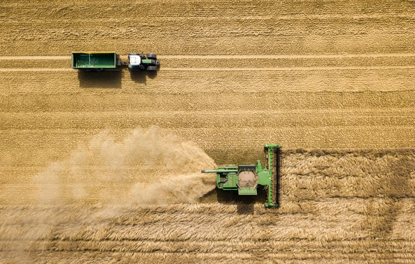 Picture field, harvest, cleaning, tractor, the trailer, harvester