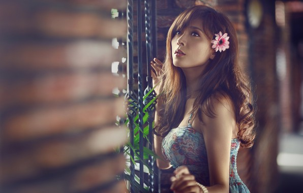 Picture flower, look, leaves, girl, dress, the fence, bracelet, brown hair, decoration, Asian