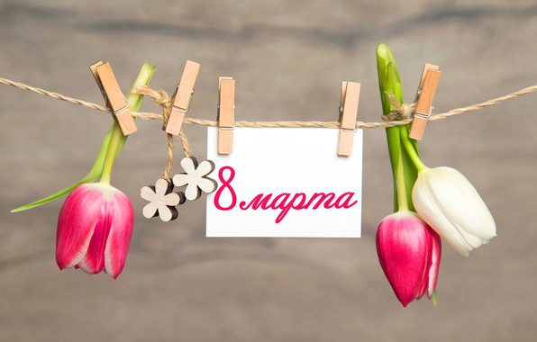 Picture flowers, tulips, March 8, clothespins, pink, flowers, romantic, tulips, postcard, spring