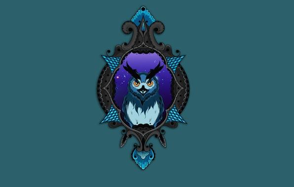 Picture owl, bird, minimalism, owl