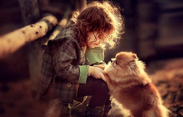 Picture the game, dog, girl, baby, child, dog, Spitz, Darya Stepanova