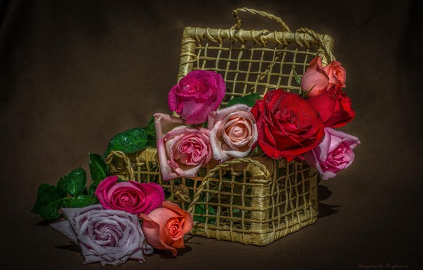 Picture basket, roses, buds