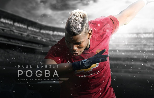 Picture wallpaper, sport, stadium, football, Manchester United, player, Paul Pogba