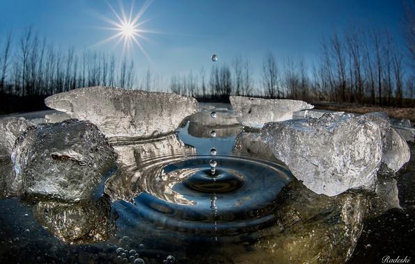 Picture winter, water, the sun, drops, macro, ice, splash