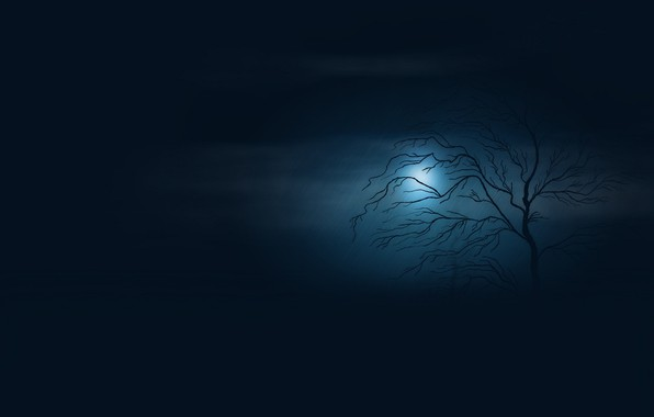 Picture void, night, fog, twilight, lonely tree, the shower, full moon, in the dark